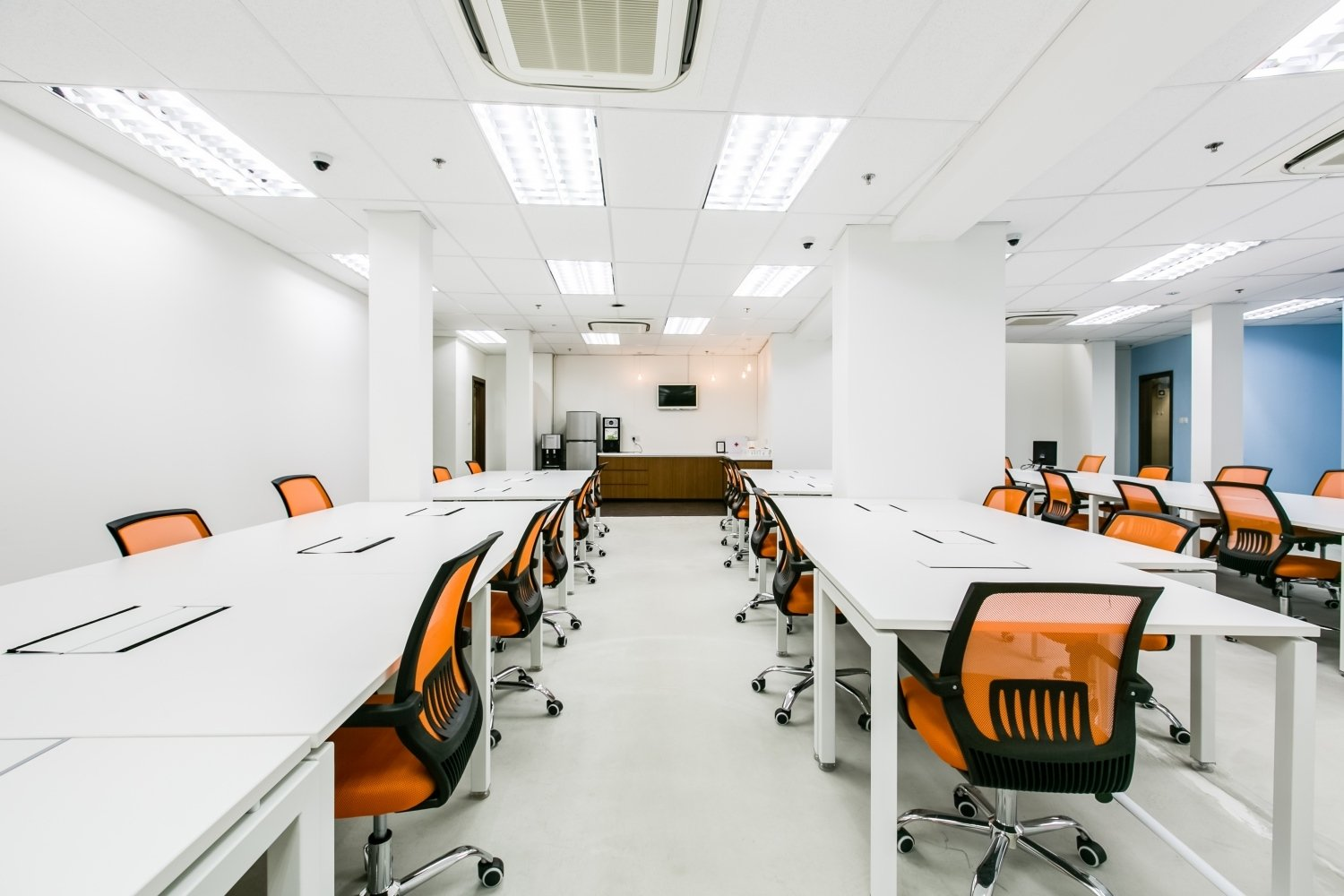 niche coworking spaces singapore the carrot patch